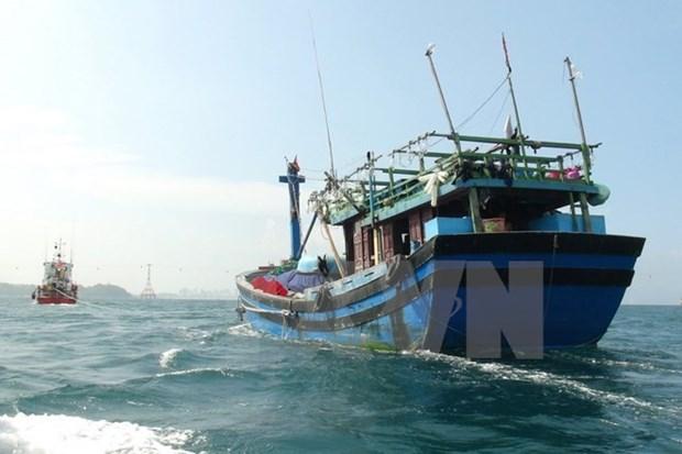 Embajada vietnamita en China realiza medidas para la proteccion de ciudadanos hinh anh 1