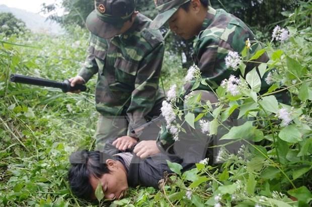Celebran en Vietnam Dia contra el trafico humano hinh anh 1
