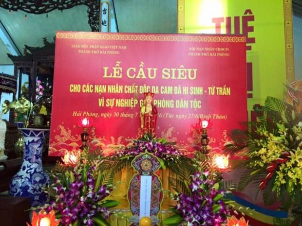 Requiem en homenaje a victimas de agente naranja en Hai Phong hinh anh 1
