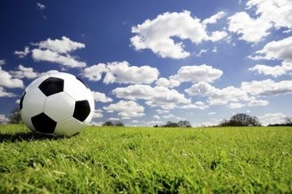 Futbolistas de Vietnam entrenaran en Sudcorea para Copa regional hinh anh 1