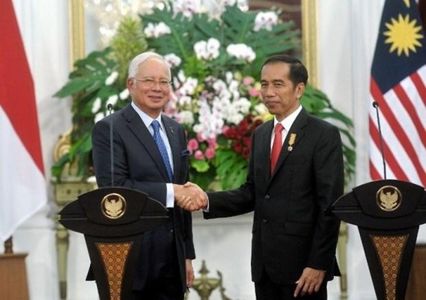 Malasia e Indonesia intensifican solucion de disputas territoriales hinh anh 1