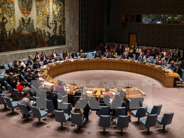 Malasia preside el Consejo de Seguridad de la ONU en agosto de 2016 hinh anh 1