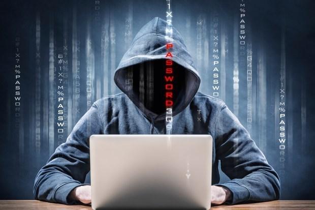 Todos los ataques ciberneticos deben ser condenados, dice vocero hinh anh 1