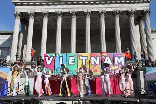 Jovenes y estudiantes vietnamitas en EE.UU. hacia la Patria hinh anh 1