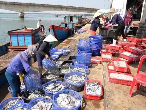 Exportaciones acuicolas de Vietnam suman tres mil 650 millones de dolares hinh anh 1