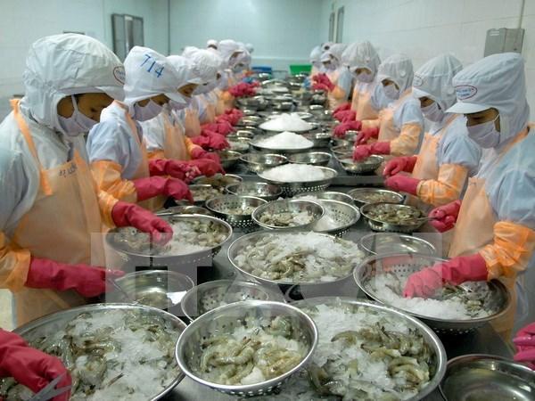 Prohiben a una empresa vietnamita exportar productos acuaticos a UE hinh anh 1