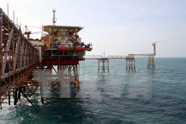 Vietsovpetro celebra 35 anos de operacion en industria de petroleo y gas hinh anh 1