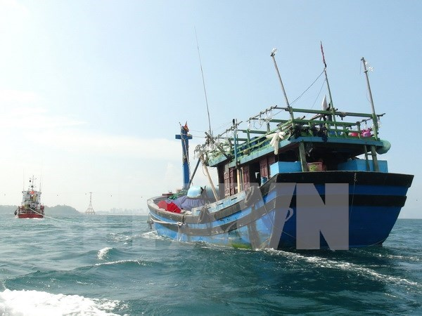 Rescata Vietnam marinero singapurense en el mar de Da Nang hinh anh 1