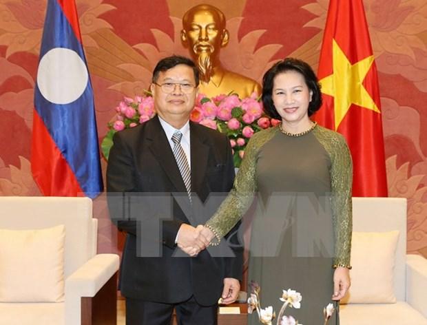 Vietnam y Laos incrementan cooperacion legislativa hinh anh 1