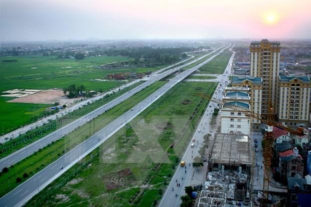 Creara Hanoi mas espacios verdes con la siembra de 45 mil arboles hinh anh 1