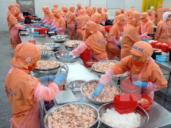 Exportaciones de camarones de Vietnam creceran a pesar de Brexit hinh anh 1