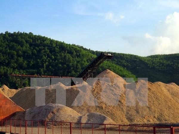 Fuerte caida de exportaciones de virutas de madera de Vietnam hinh anh 1