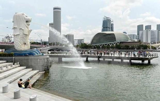 Singapur condena a prision a simpatizantes de Estado islamico hinh anh 1
