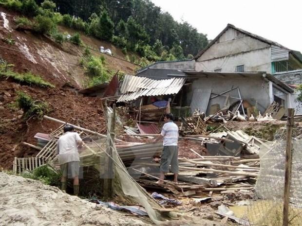 Al menos siete muertos por tifon Dianmu en Vietnam hinh anh 1