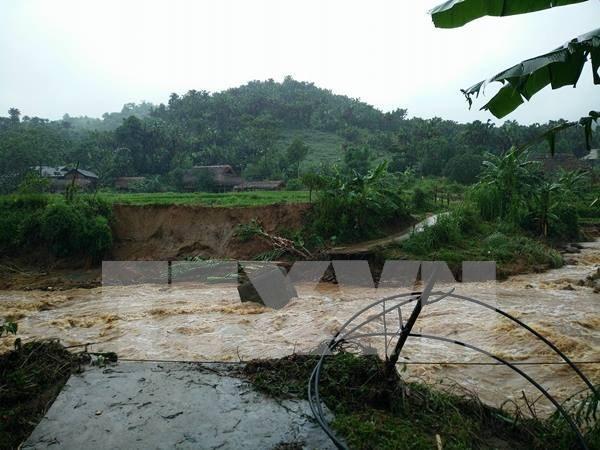 Tifon Dianmu dejo decenas de muertos y heridos en Vietnam hinh anh 1