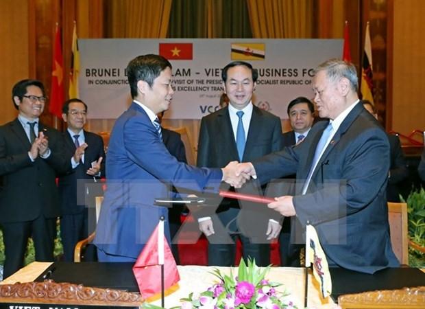 Vietnam y Brunei buscan medidas para intensificar la cooperacion economica hinh anh 1