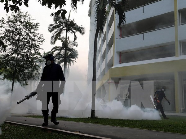 Singapur lanza campana de eliminacion de mosquitos para prevenir Zika hinh anh 1