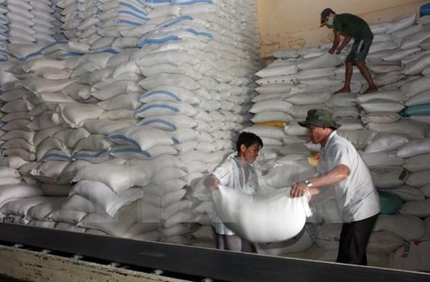 Vietnam y Tailandia ganan subasta para exportar arroz a Filipinas hinh anh 1
