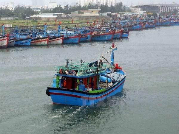 Pescador lesionado de Vietnam esta listo para volver a casa con la ayuda de China hinh anh 1