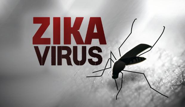 Situacion mas compleja de contagio de Zika en Tailandia y Singapur hinh anh 1
