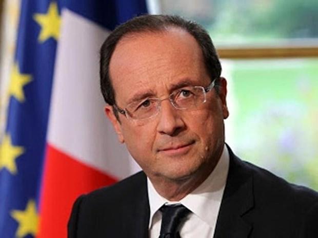 Opinion publica sobre la visita del presidente Francois Hollande a Vietnam hinh anh 1