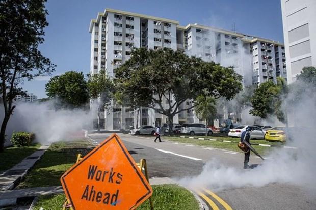Singapur permitira a pacientes infectados de Zika recuperarse en casa hinh anh 1