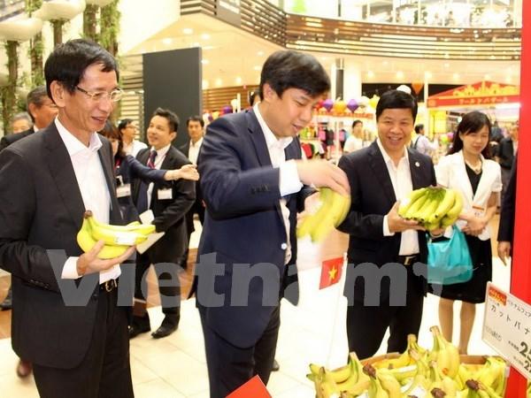 Grupo Aeon ayuda a empresas vietnamitas a acceder al mercado japones hinh anh 1
