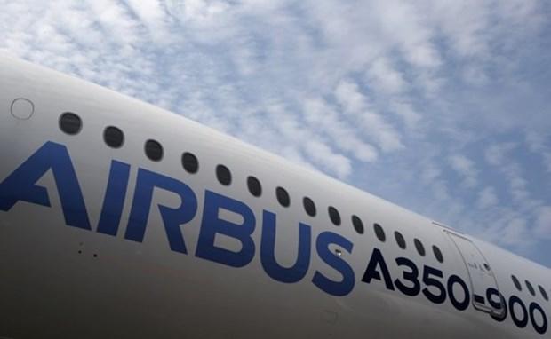 Airbus ayuda a desarrollar la industria de aviacion en Vietnam hinh anh 1