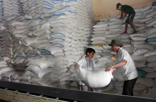 Busca Myanmar nuevos mercados receptores de arroz hinh anh 1