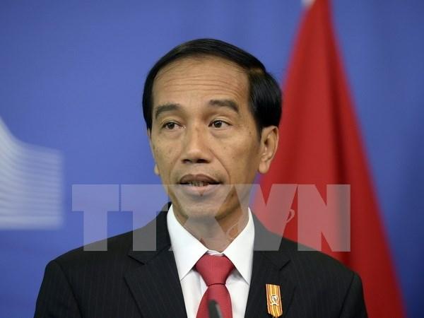 Presidente de Indonesia destaca la importancia de relaciones ASEAN-Japon hinh anh 1