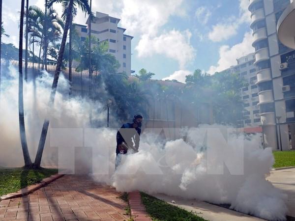 El virus Zika continua su expansion en Singapur hinh anh 1