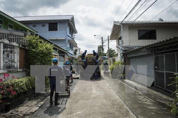 Detectan nuevos casos de Zika en Tailandia y Singapur hinh anh 1