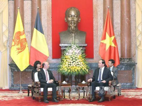 Destacan ayudas no reembolsables de region belga a Vietnam hinh anh 1