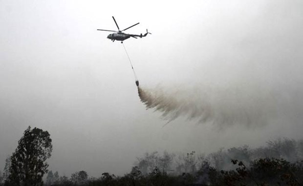 Indonesia se empena en controlar incendios forestales hinh anh 1