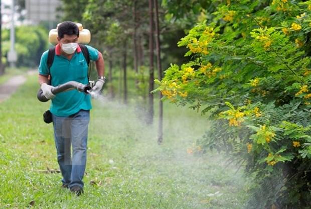 Detectada una vietnamita infectada de Zika en Japon hinh anh 1