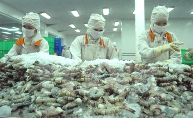 Vietnam prepara exportacion de camarones frescos a Australia en 2017 hinh anh 1