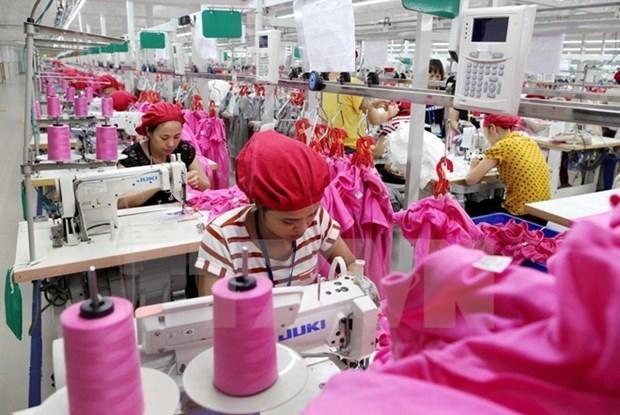 Sector de confeccion y textil de Vietnam va viento en popa hinh anh 1