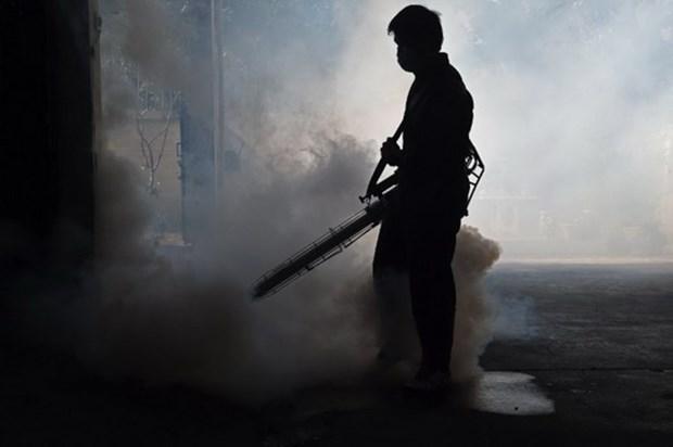 Tailandia aumenta su nivel de alerta por Zika hinh anh 1
