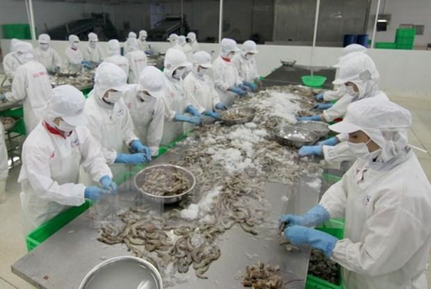 En Vietnam conferencia aborda cultivo de camarones de agua salobre hinh anh 1