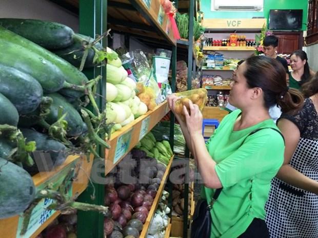 Presentan Union de cooperativas de productos agricolas seguros de Vietnam hinh anh 1