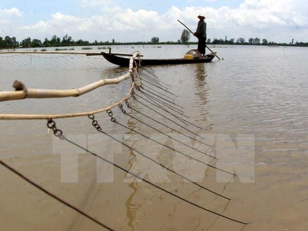 Provincias deltaicas de Vietnam plantean medidas contra el cambio climatico hinh anh 1