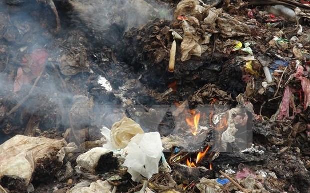 Vietnam busca apoyo en solucion de problemas ambientales hinh anh 1