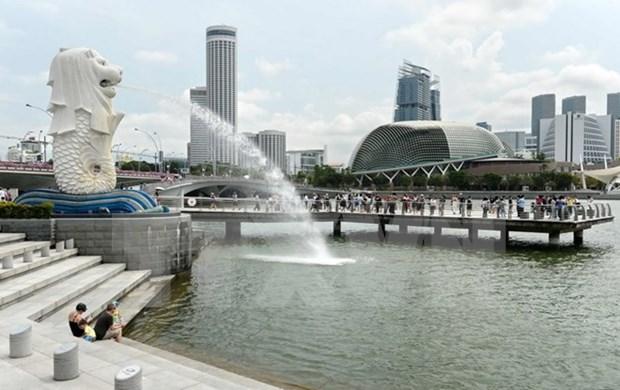 Singapur publica libro blanco sobre elecciones presidenciales hinh anh 1