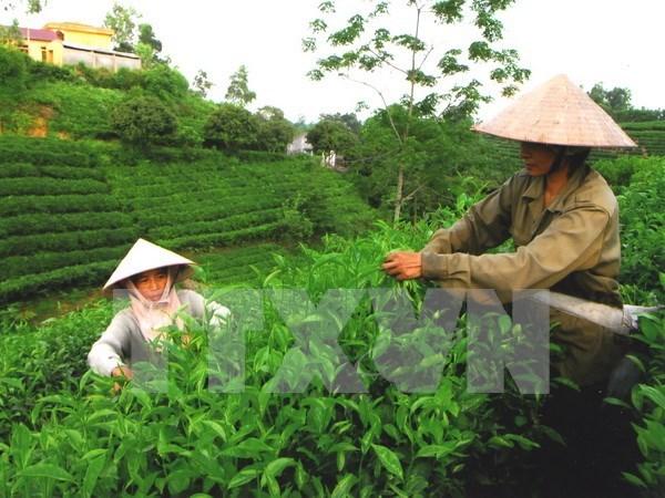 Vietnam promueve comercio e inversiones en Estados Unidos hinh anh 1