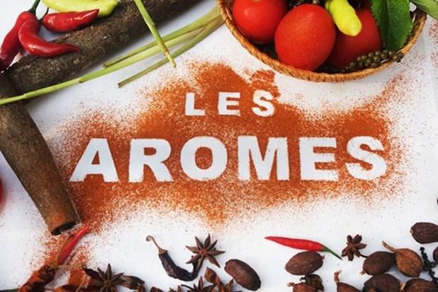 Hanoi acogera festival gastronomico internacional Les Aromes hinh anh 1