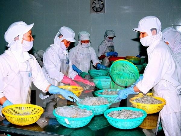 Celebran en Vietnam foro sobre conexiones empresariales hinh anh 1