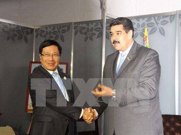 Vicepremier vietnamita recibido por Nicolas Maduro hinh anh 1