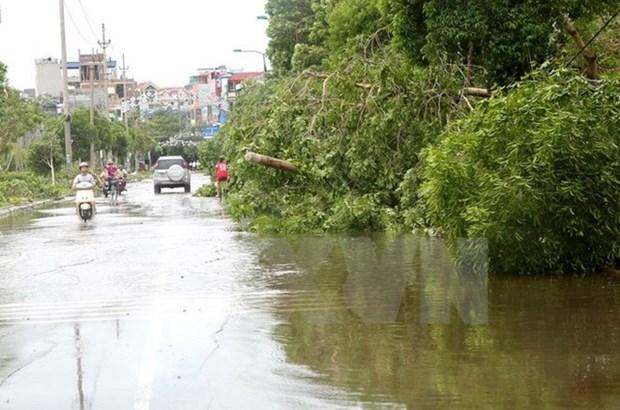 Al menos 10 muertos en Indonesia por inundaciones hinh anh 1