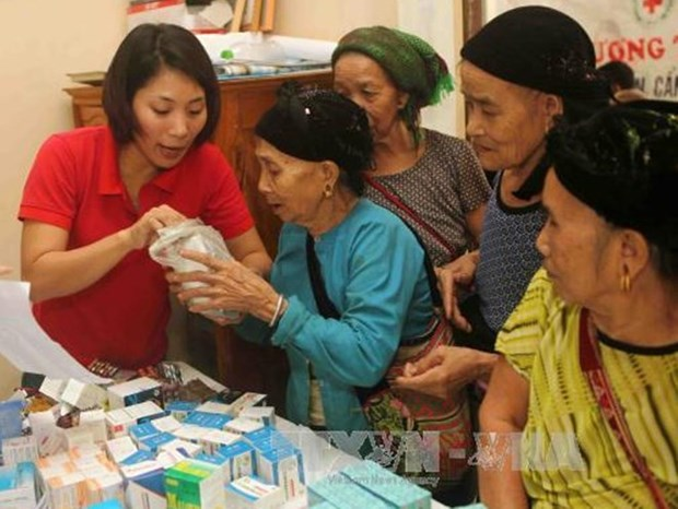 Asistencia holandesa al empoderamiento de mujeres en Vietnam hinh anh 1