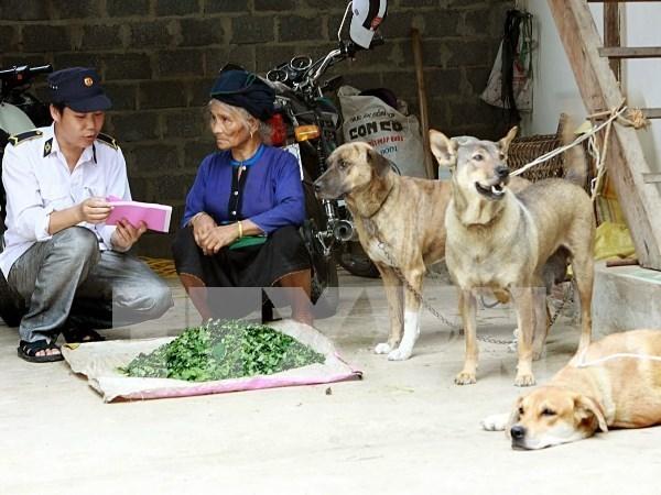 Responde Hanoi a Dia mundial contra la rabia hinh anh 1